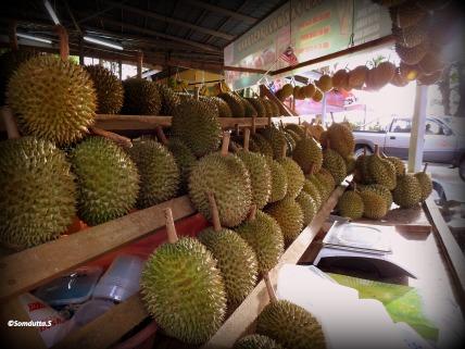 Tropical fruit - Batu Firringhi