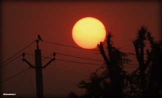 Sunrise on the way to Alwar Fort